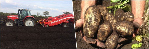 J&D Rimmer and Sons are fourth generation farmers who specialise in growing fine quality potatoes